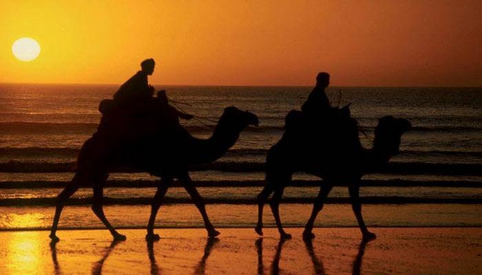 Agadir Camel Trekking