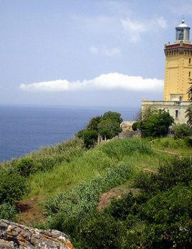 Tangier Tours